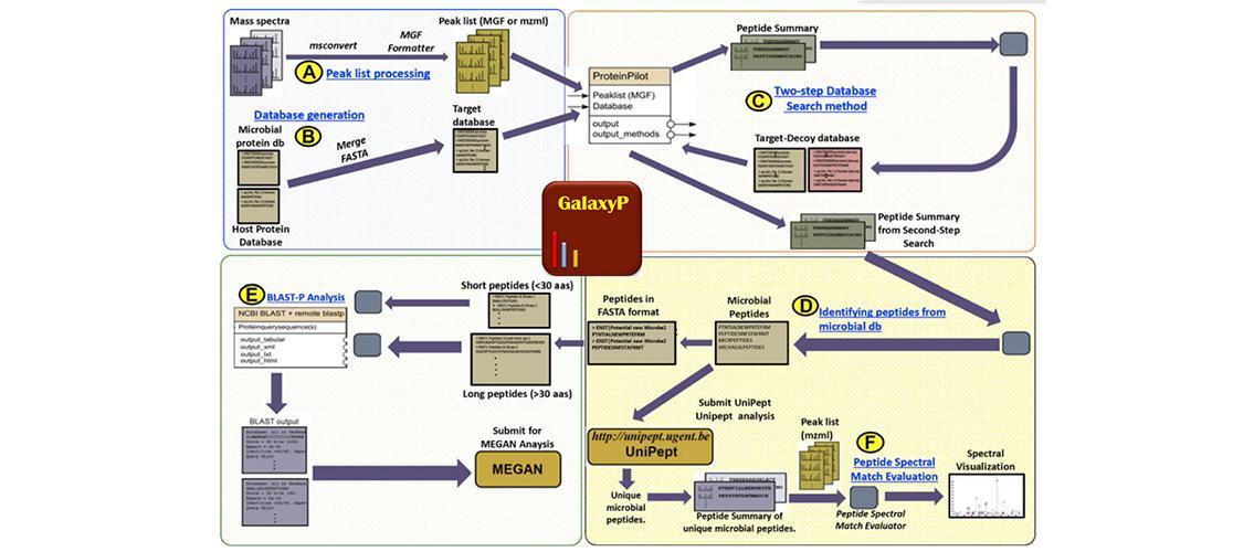 Galaxy flow chart