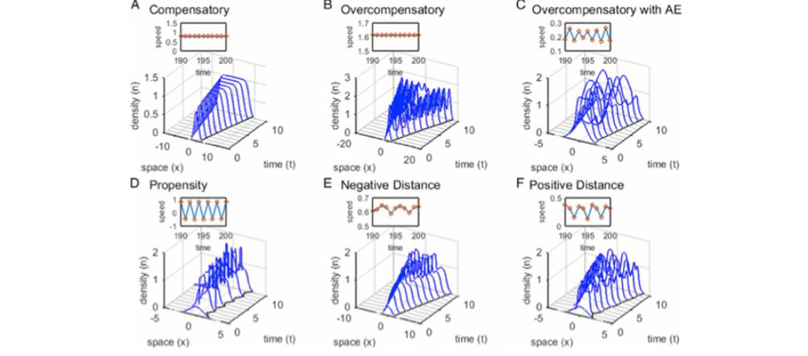 graphs showing plants invasion dynamics under different types of density dependence and dispersal