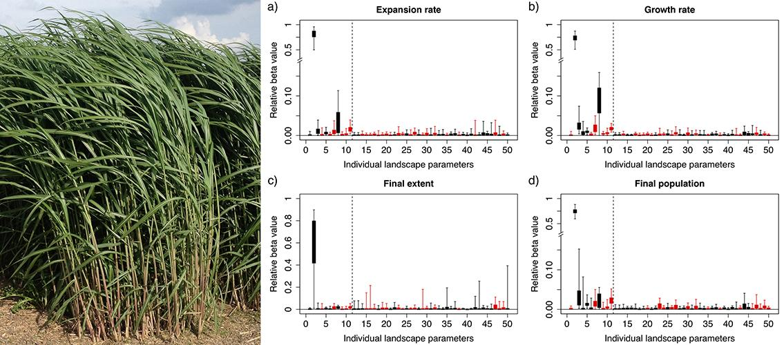 split screen of giant Miscanthus grass on the left, plots of relative importance values of landscape characteristics
