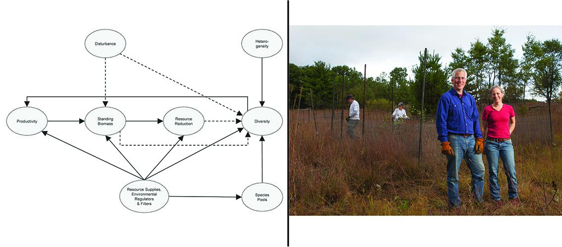 graph of integrated model and photo of researchers at NutNet site