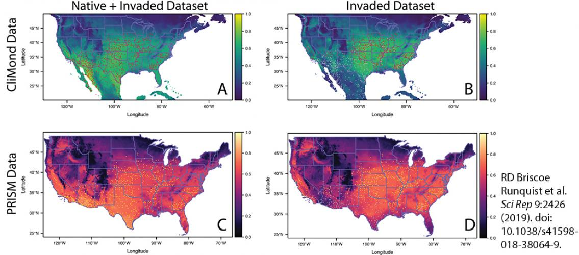 maps showing spread of Palmer amaranth predicted by various models