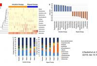 graphs showing composition of microbial communities during induction and repeat therapy