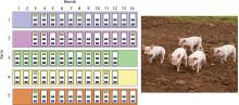 depiction of sampling from farms
